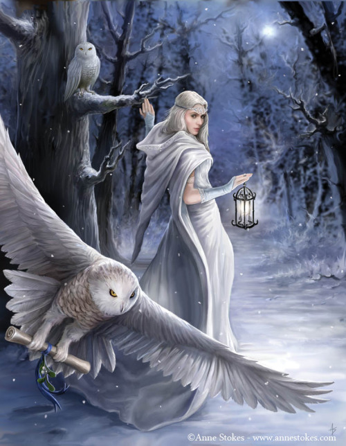 artmonia:  Midnight Messenger by Anne Stokes.  (I really do want her outfit though.)