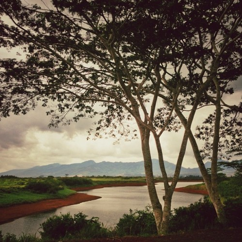 Tanada Reservoir #hawaii (Taken with Instagram at Dole Plantation)
