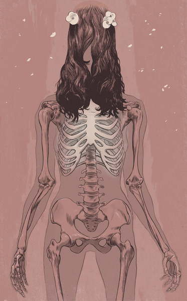 myampgoesto11:  Skeletal illustrations by Señor Salme |On Tumblr