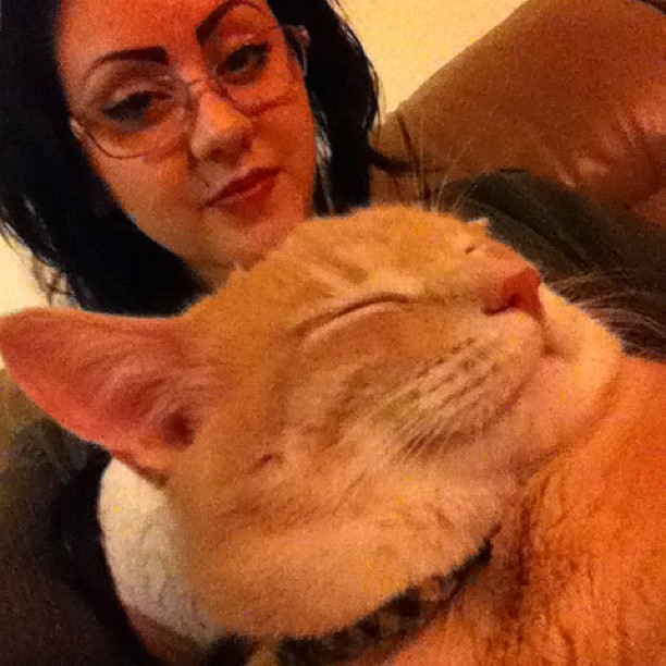 I love my little boy 😽 #crazycatlady #kevin #fuckyeah #self (Taken with Instagram)