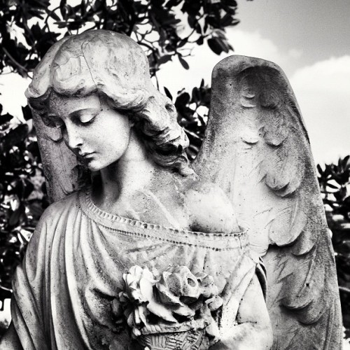 """Angels have no philosophy but love"" @oaklandcemetery   #atlanta #georgia #historic #oaklandcemetery #angels  (Taken with Instagram)"