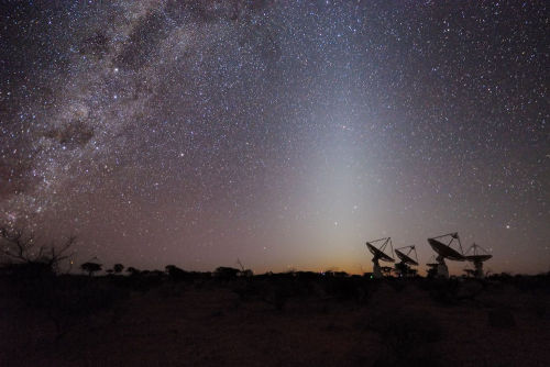 Australian Square Kilometre Array Pathfinder (ASKAP) radio telescope