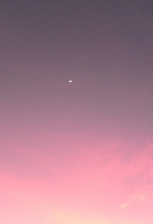 c0caino:  cresent moon at sunset