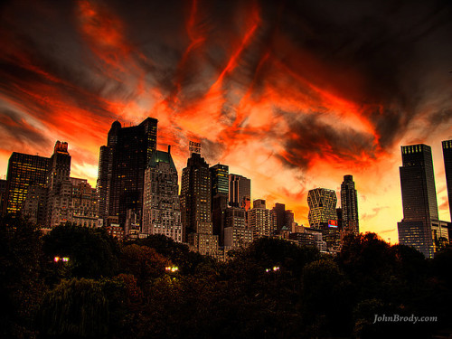 Sunset Over Central Park NYC  Bizarre Sunset Over Central Park NYC - Colors evolved from red to burgundy to deep blues.