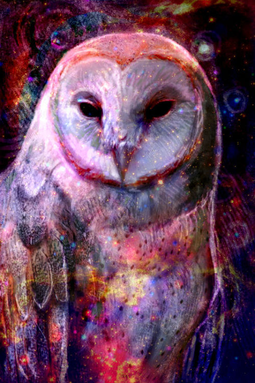 littlepotatocroissant:  Cosmic Owl by ~cqillustration1111