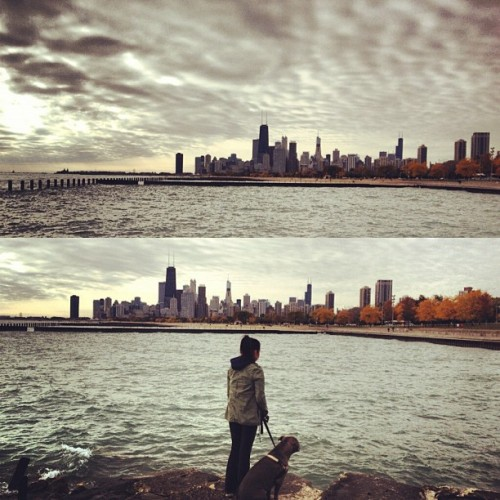 my-life-ambition:  Morning walk with Dino #lakefront #city #chicago #landscape (Taken with Instagram at Fullerton Beach)  Isolation in the midst of all our congestion. This is beautiful.