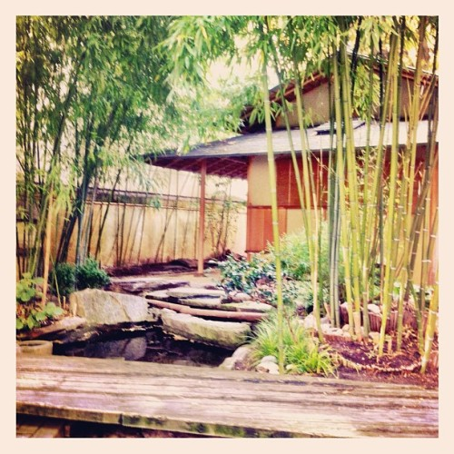 Secret zen garden in Paris… Visit zen gardens with Axel on http://tripxp.com #instamood #photoiftheday #indtagramhub #paris #france #me #picoftheday #webstagram #travel #follow #instago #tripxp #zen #japan #garden  (Pris avec Instagram)