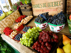 thefruitmarket:  quebec, summer (by vika 2008)
