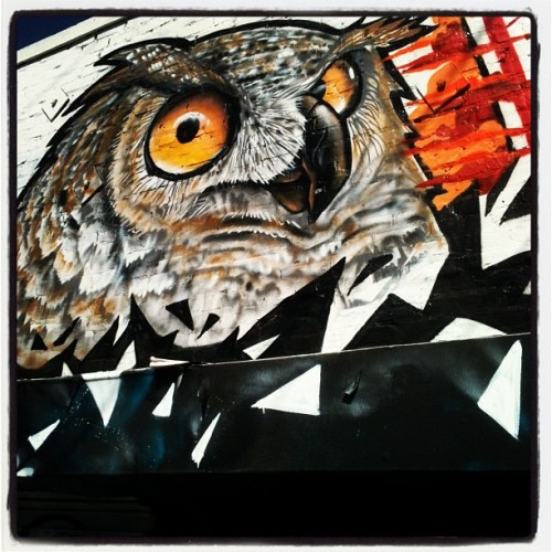 scabdriver:  10/7 - Hoot. (Taken with Instagram)