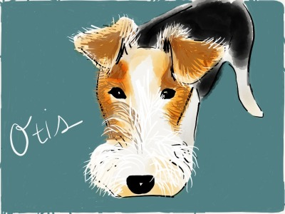When life gives you lemons, give them to Otis… by dogdoodles:  Meet Lucy's brother Otis. My coworker tells me that he has an obsession with citrus, to the point that he can smell lemons, limes and oranges in the refrigerator and will bark at the appliance until he can sink his teeth into some vitamin C. My coworker says she often finds rock-hard limes under the couch. This is my first draft of Otis, created on my iPad.