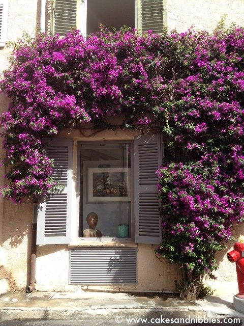 C&N TraveLog: St. Tropez, France (June 2012)  Can't get enough of Bourgainvillea!