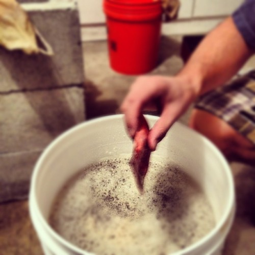 Yeast (Taken with Instagram)