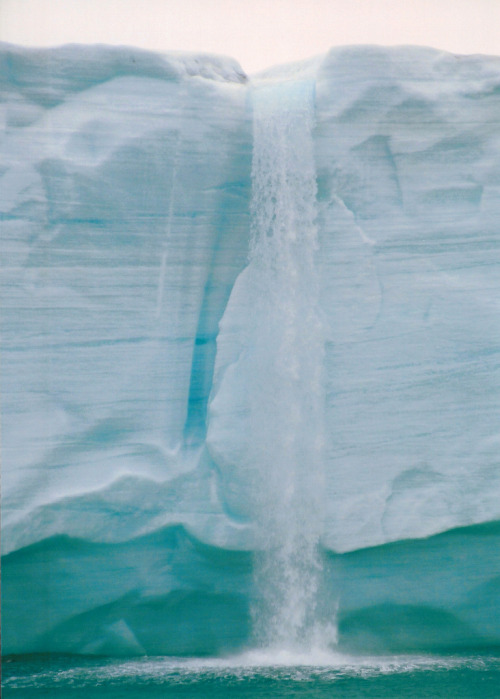 inoperant:  Ice Waterfall (by sophieatkinson)
