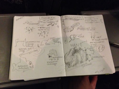 Biomimicry brainstorm by @amyleerobinson and @sterlwh on @Amtrak Downeastah in Maine