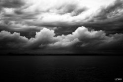 darkface:  Quiet Storm by ~LEO698