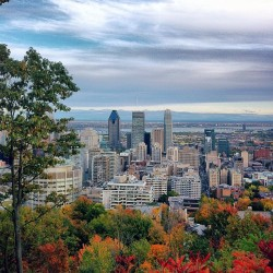 veomtl:  A view | #montreal #panorama #iphoneonly (Taken with Instagram at Chalet du Mont Royal)  Note: veomtl is my alternate tumblr account for my design studio and occasional iPhone photos.