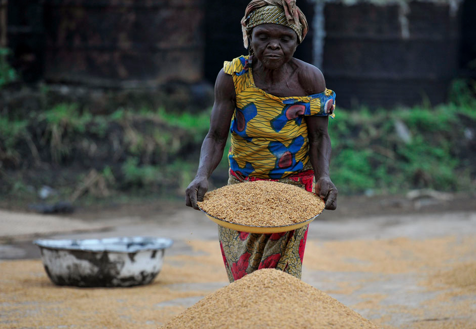 A  woman works in a rice mill in Aliade community in the Gwer local government area of the central state of Benue, Nigeria, October 4, 2012. REUTERS/Afolabi Sotunde