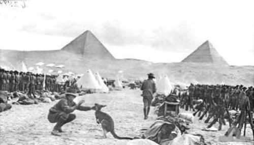 Kangaroos and Pyramids. A collection of photos of the ANZAC corps in Egypt during WWI.