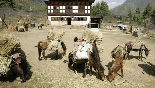 Bhutan aims to be first 100% organic nation  The tiny nation has an unusual approach to economic development, centered on protecting the environment and focusing on mental well-being.  (click-through for full story)
