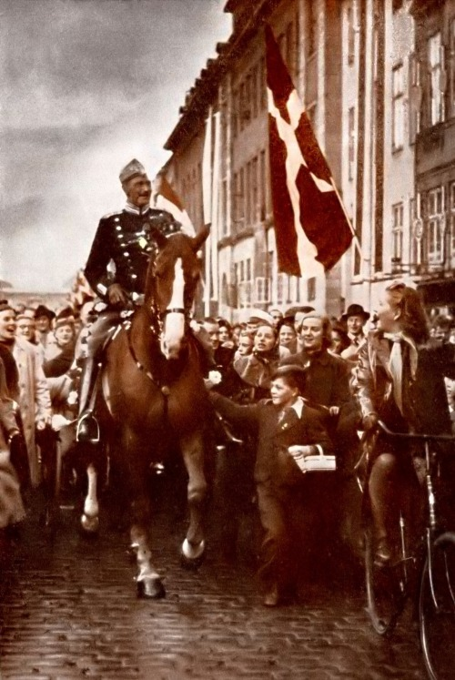 "During the German occupation of Denmark of WWII, King Christian X of Denmark and Iceland used to ride daily through the streets of Copenhagen unaccompanied while the people stood and waved to him. It is said that one day, a German soldier remarked to a young boy that he found it odd that the king would ride with no bodyguard. The boy reportedly replied, ""All of Denmark is his bodyguard."""