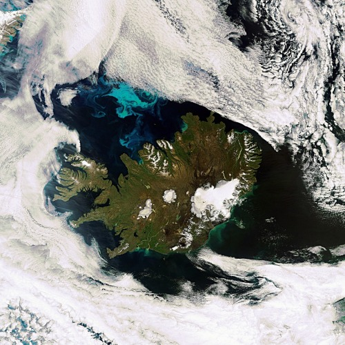 dontrblgme:  Earth from Space: Iceland (via europeanspaceagency)