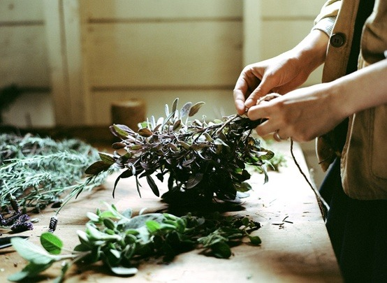lylaandblu:  botanical / amy merrick for kinfolk// photos by p fitzgerald