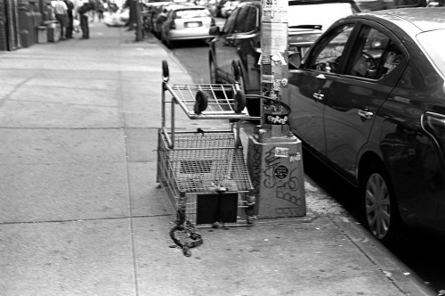 shopping cart East Village