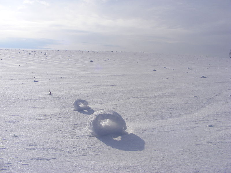 ikenbot:  Snow Rollers  A snow roller is a rare meteorological phenomenon in which large snowballs are formed naturally as chunks of snow are blown along the ground by wind, picking up material along the way, in much the same way that the large snowballs used in snowmen are made.  Unlike snowballs made by people, snow rollers are typically cylindrical in shape, and are often hollow since the inner layers, which are the first layers to form, are weak and thin compared to the outer layers and can easily be blown away, leaving what looks like a doughnut or Swiss roll —[**]