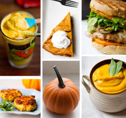 findvegan:  My 25 BEST vegan Pumpkin Recipes for fall