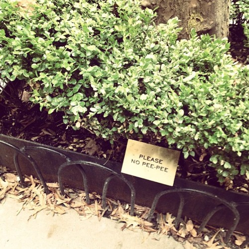Taken with Instagram at Greenwich Village