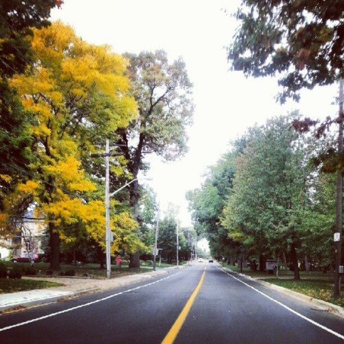 Damnit… it's fall (Taken with Instagram)