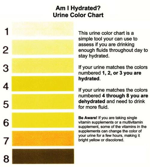lickystickypickywe:  If your urine has the color next to 8, start calling the ER or the morgue. Really.