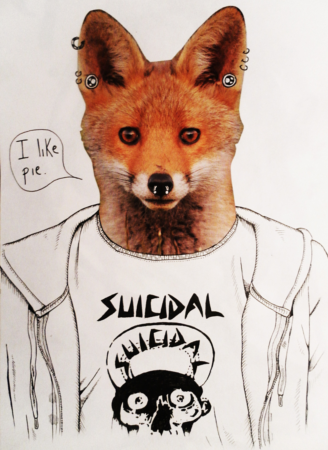 livysmindspill:  Even the fox likes pie.  really urban fox