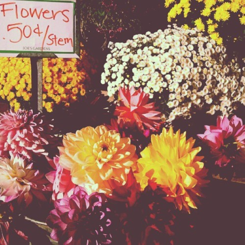 #dahlia #flowers #market  (Taken with Instagram)