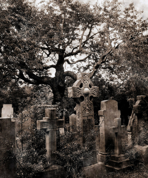 Dean Cemetery by J. A. King on Flickr.