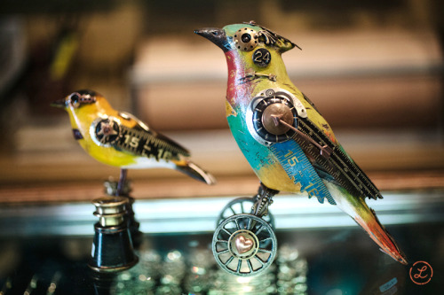 lesliefandrich:  I found these amazing clockwork birds at The Evolution Store in SoHo last week. Aren't they beautiful? They are created by Jim and Tori Mullen and you can see more of these beautiful creatures on their website.