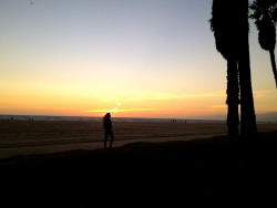 Venice Beach this evening