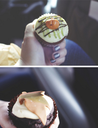 cupcakes by Madeline Gbur on Flickr.