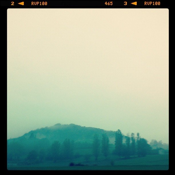 misty morning in italy Left Parma early to tour a Parmigiano Reggiano production facility outside the city in San Vitale Baganza. There was a moment when our guide was talking about imitation Parmigiano Reggiano that I realized Parmesan by Kraft - that grated cheese product we're so familiar with in American supermarkets - is not related to cheese made in Italy in any way at all. more photos from my trip on instagram.
