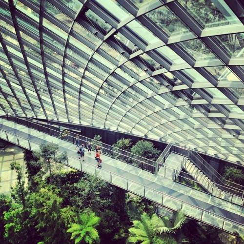Gardens by the Bay #architecture #archdaily #singapore #instagood #iphonesia  (Taken with Instagram at Cloud Forest Garden by The Bay Singapore)