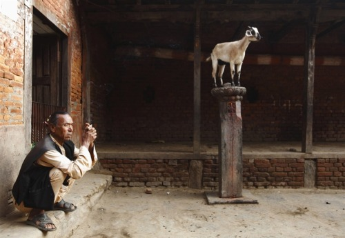 fotojournalismus: Khokana in Lalitpur, Nepal on October 9, 2012.[Credit : Navesh Chitrakar / Reuters]