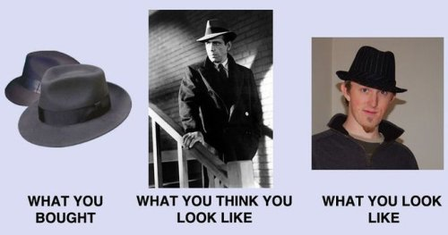 Tumblr, tell me your feels about Fedora Shaming?