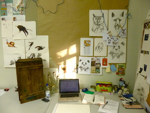 The desk and wall area at uni. Where art, confusion and and the occasional paddy take place and where many a brew is sipped.