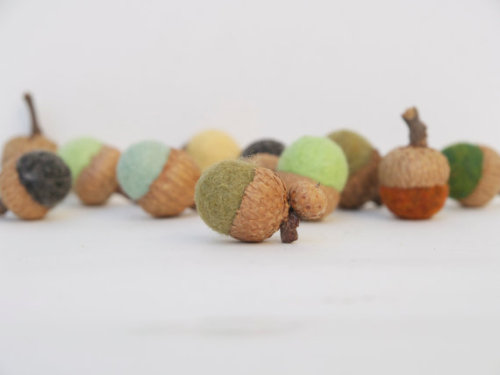 Natural Acorns Felted Needle 10 Handmade wool by Fairyfolk on Etsy