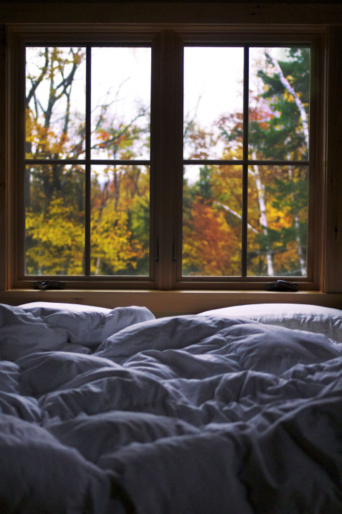 this is the absolute perfect sleeping [or staying in bed all day] spot.