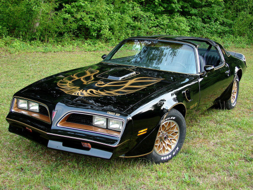 Pontiac Firebird Trans Am The baddest ass (bad assest?) car of all time.