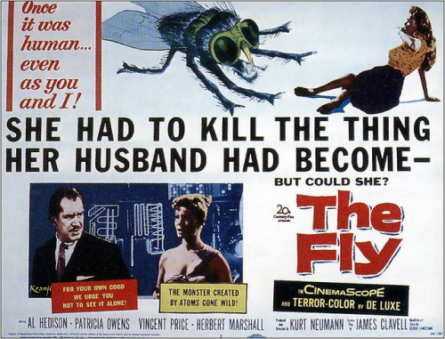 "THE FLY (1958) Considering the David Cronenberg remake of this is one of my favorite sci-fi films, if not just one of my favorites period, of all time, I couldn't help but lower my expectations a tad for the original. (BTW, I've owned the original in my DVD collection for a good nine years, since my dad mistakenly got it for me instead of the Cronenberg version.) Though the characters are flat even by 1950s movie standards and the film takes itself a bit too seriously, the 1958 Fly is still a classic in its own right. The scientist's transformation from intelligent man to brutal creature is just as heartbreaking as it was in the 1986 version, and the truly memorable moments, such as the wife trying to catch the fly with her husband's head and body and the iconic ""Help meeee!"" ending, are still as tense and shocking as they were meant to be back in 1958. Plus, a cat gets sent into space by a matter transporter. Awesome."