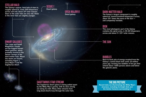 jtotheizzoe:  A look at what makes up the Milky Way and our galactic neighborhood, from Nature.  (Galactify this image by clicking here)