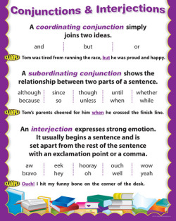 Conjunctions & Interjections