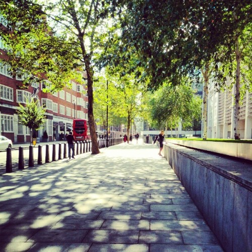 #street #urban #London #instamood #instalondon #instadaily #sun #trees  (Taken with Instagram)